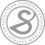 surprise_silver