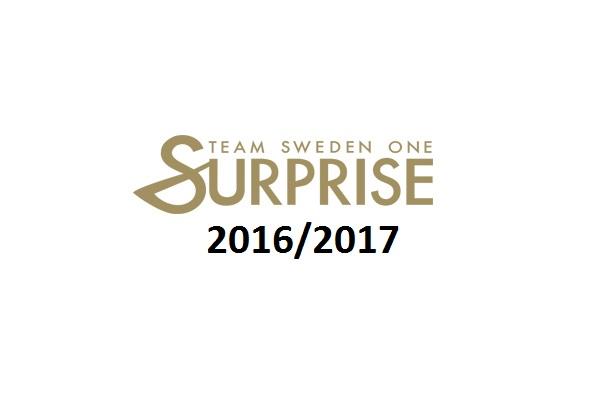surprise1617