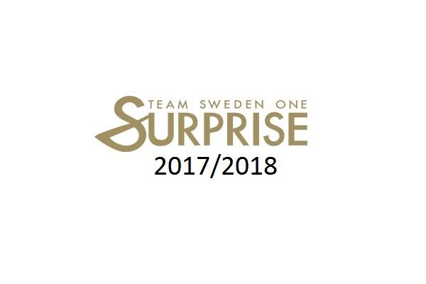 surprise1718